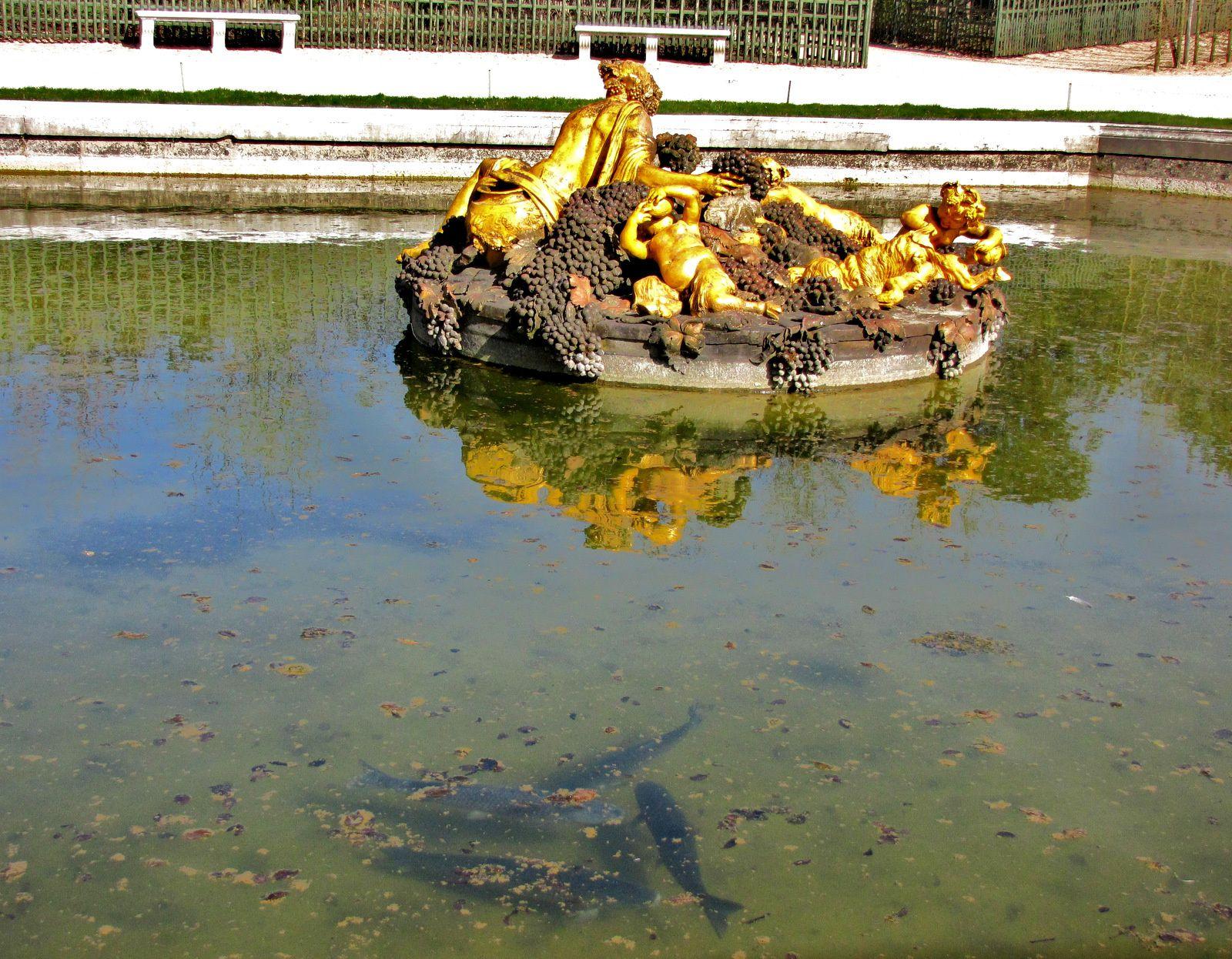Bassin de Bacchus, parc de Versailles