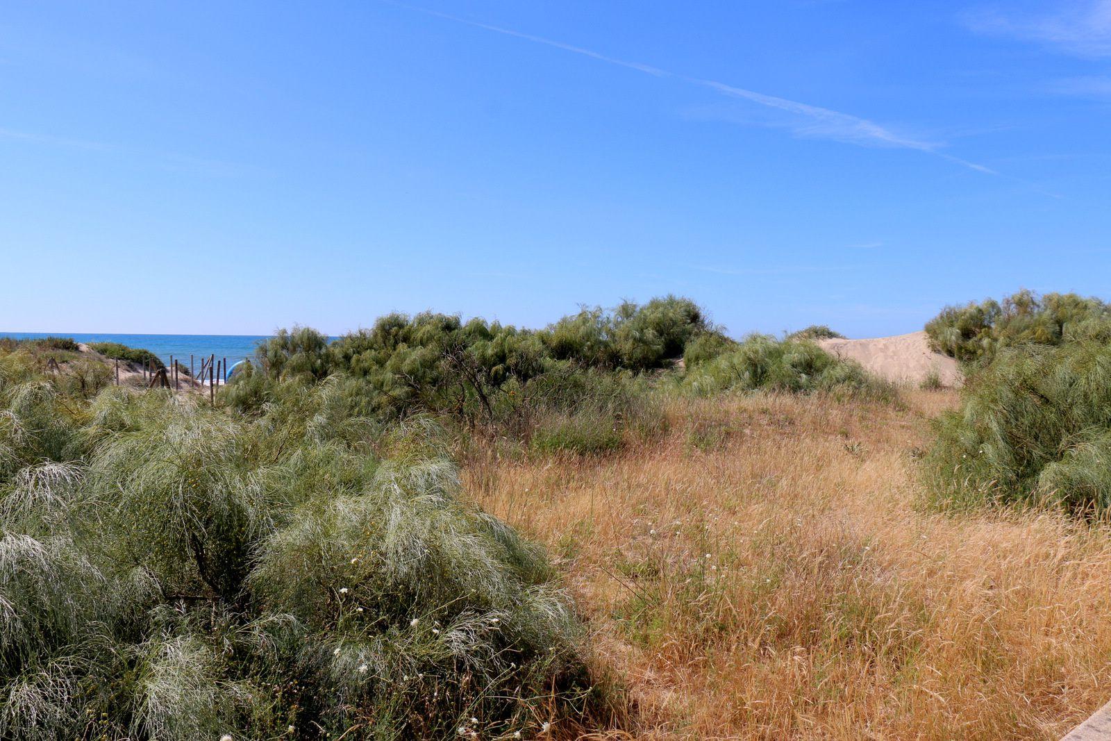 Sur la promenade du bord de mer, Islantilla (Andalousie)