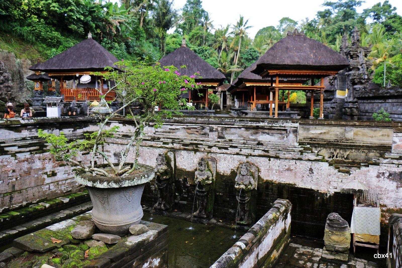 les bains du temple de goa gajah grotte de l 39 l phant. Black Bedroom Furniture Sets. Home Design Ideas