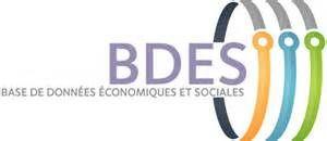 d) Base de données Economiques et sociales (BDES)