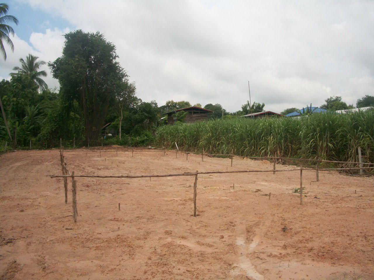 Projet de maison: Implantation sur le terrain