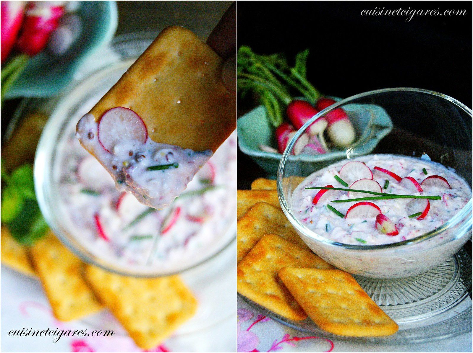 Tartinade de Radis Rose
