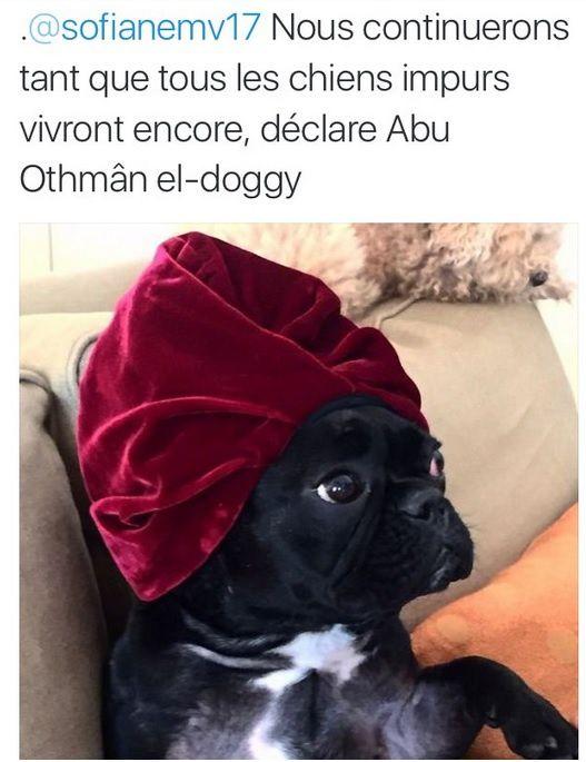 Abu Waf Waf