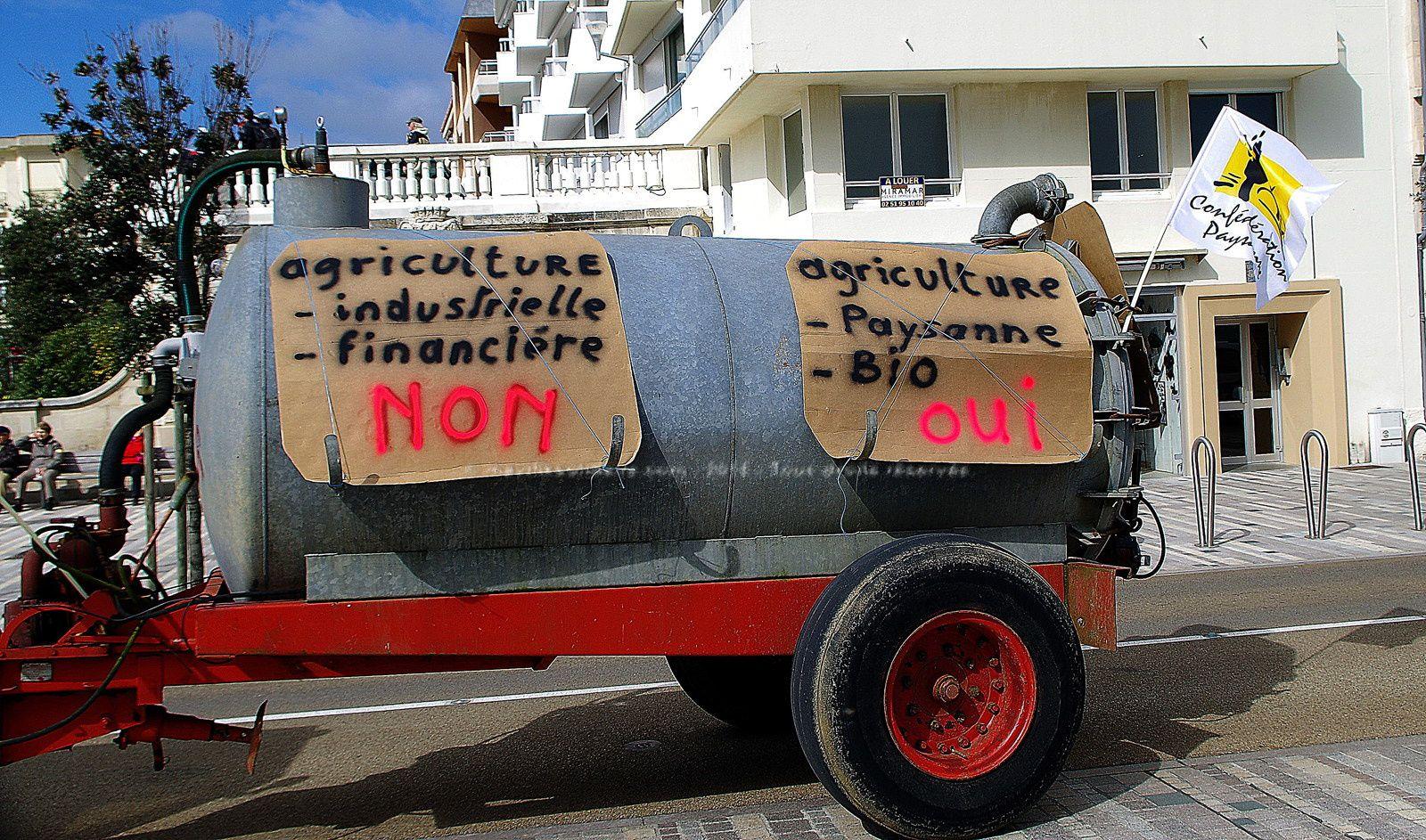 Les Sables d'Olonne. Plus de 1000 personnes manifestent contre l'usine à cochon du Poiroux. [39 images]