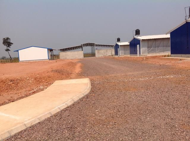 PROJECTO AGRO-PECUÁRIO NO EX-COLONATO DE 31 DE JANERIO, HOJE NSOSO