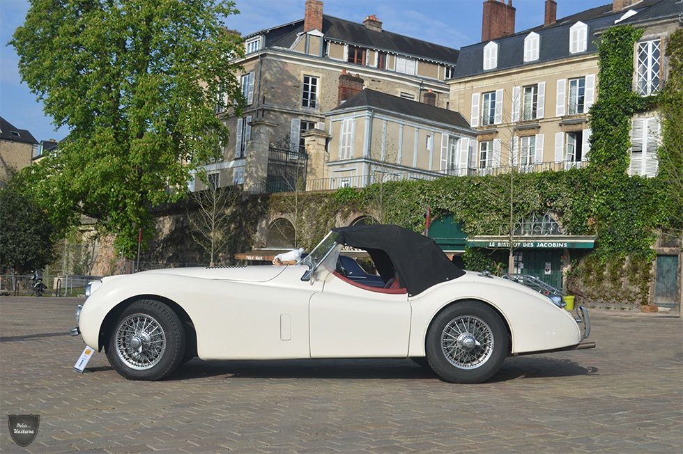 AB65 • Jaguar XK120 roadster '53