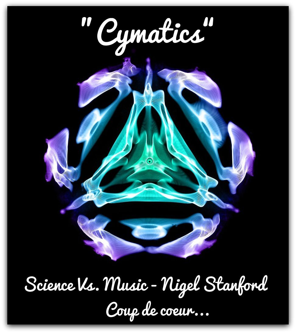 CYMATICS: Science Vs. Music - Nigel Stanford