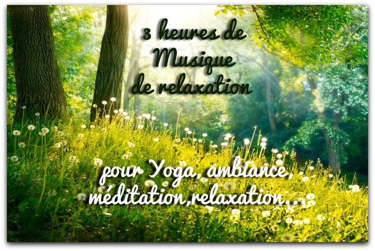musique relaxation 6 heures