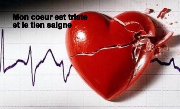 Le coeur de Nice ensanglanté