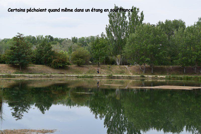 Plans d'eau et rivières victimes de la sécheresse