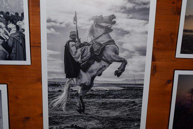 La passion du cheval jusqu'au bout du pinceau