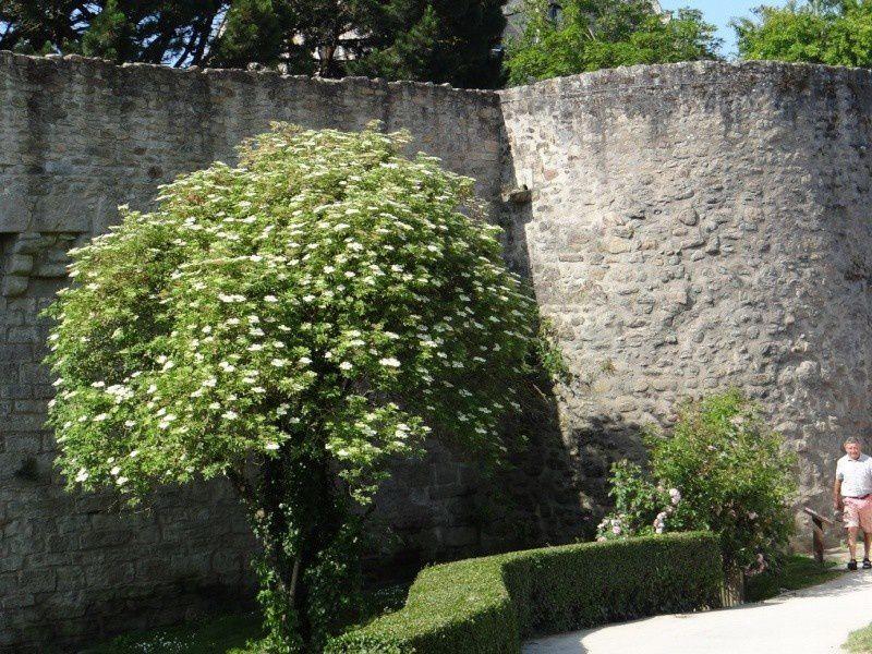 Guérande (fin)