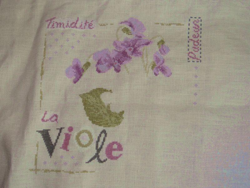 Les violettes de Lilipoints.