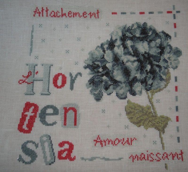 L'hortensia (fin)