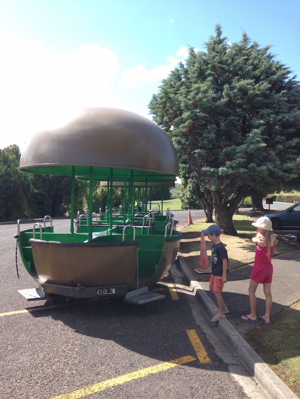 Te Puke - Kiwi 360