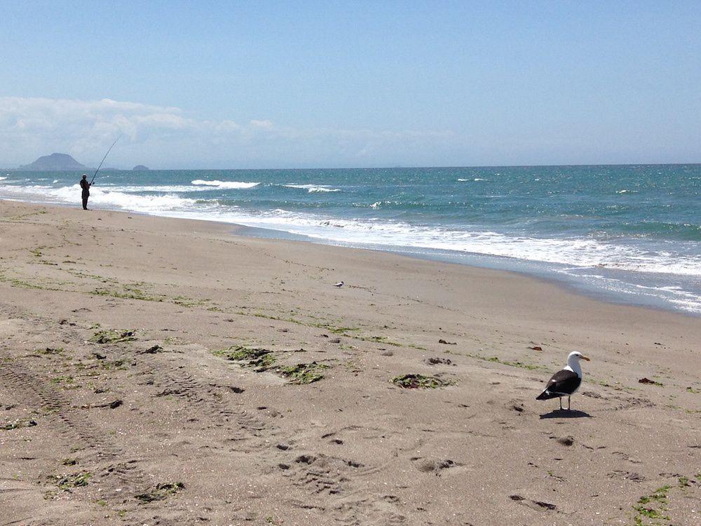 Papamoa Beach - Bay of Plenty