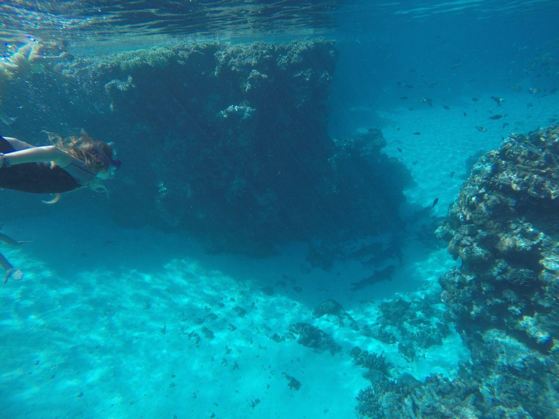 Excursion magique vers l'atoll de Nokanhui ~ île des Pins