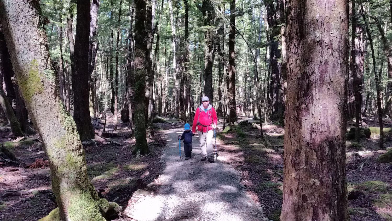 Randonnée au lac Sylvan ~ Glenorchy ~ Nouvelle Zélande