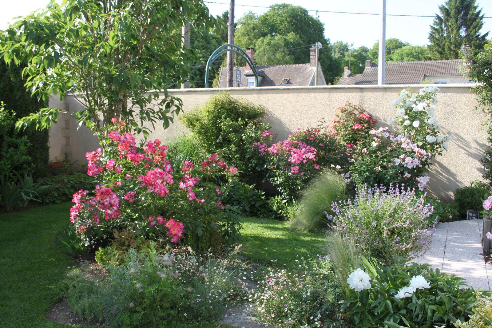 Visite du jardin du chat vert plaisir for Jardin a visiter 78