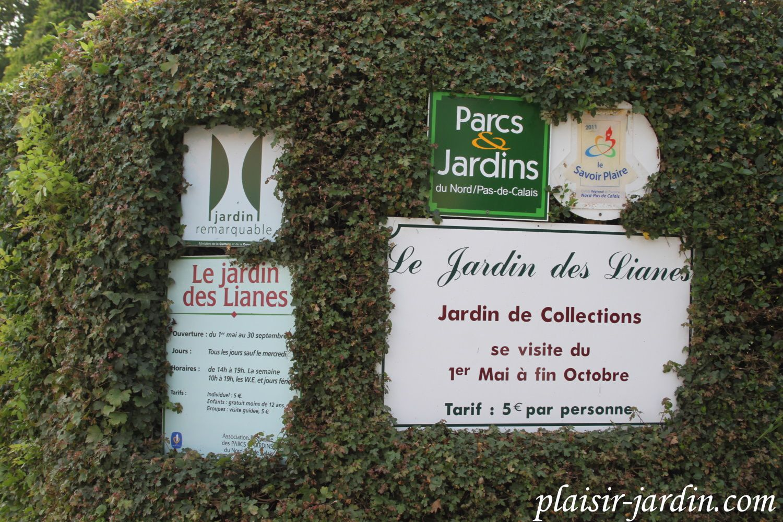 La Découverte Du Jardin Des Lianes Plaisir Jardincom