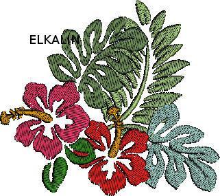 Hibiscus cadre 10 cm x 10 cm