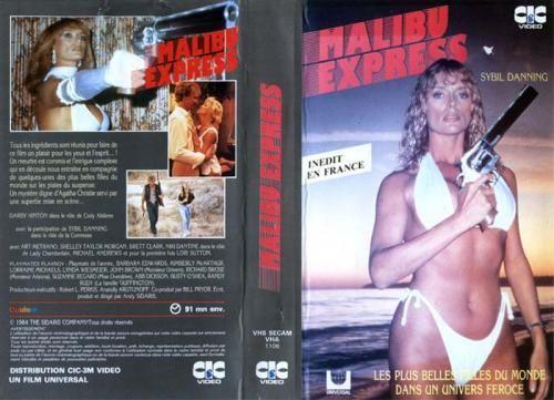 """""""Malibu Express"""" (Sidaris, 1985), un exemple de films d'action obscurs tournés par Sybil Danning dans les années 80. La dame aime apparemment les gros calibres… (image: www.nanarland.com)"""