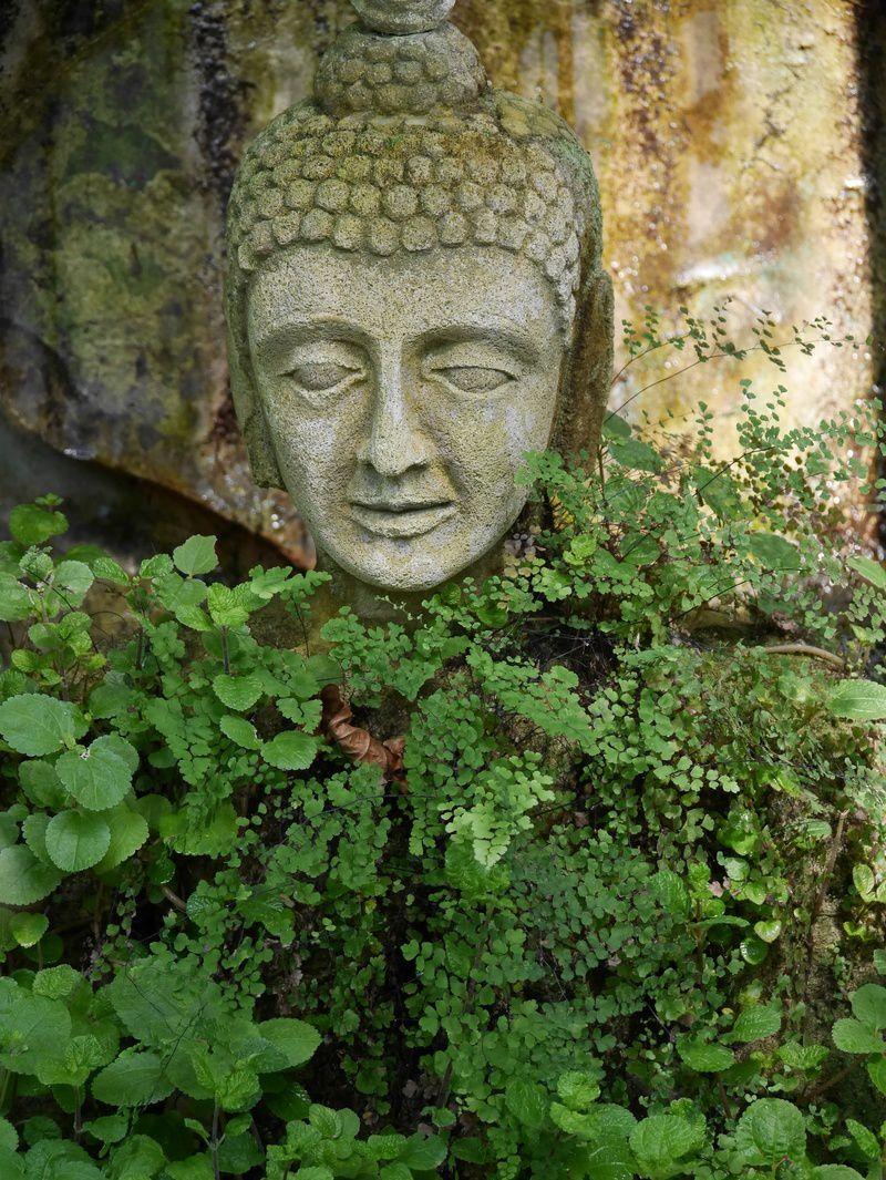 CAEN : jardin botanique