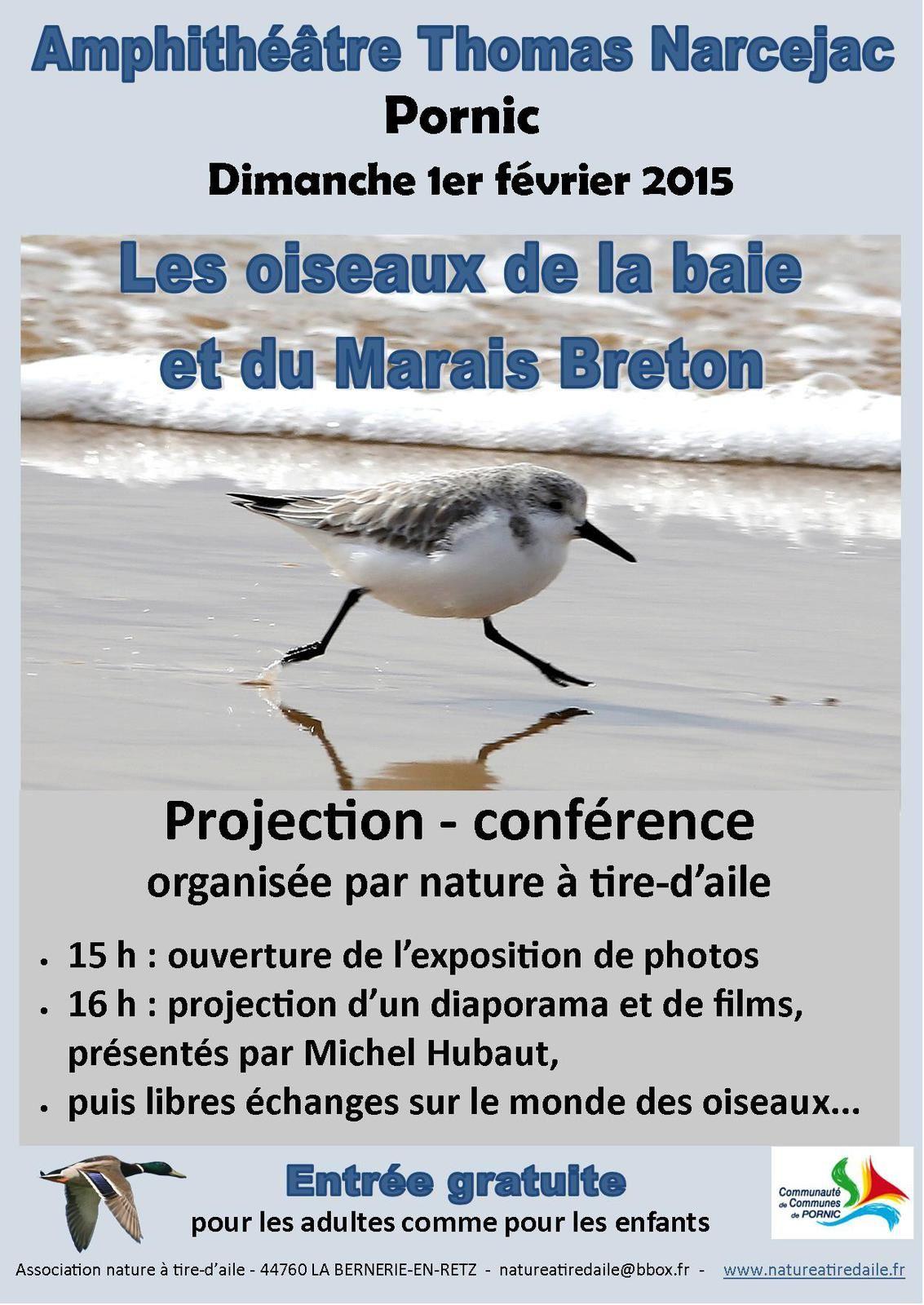 Michel HUBAUT : les oiseaux de la baie