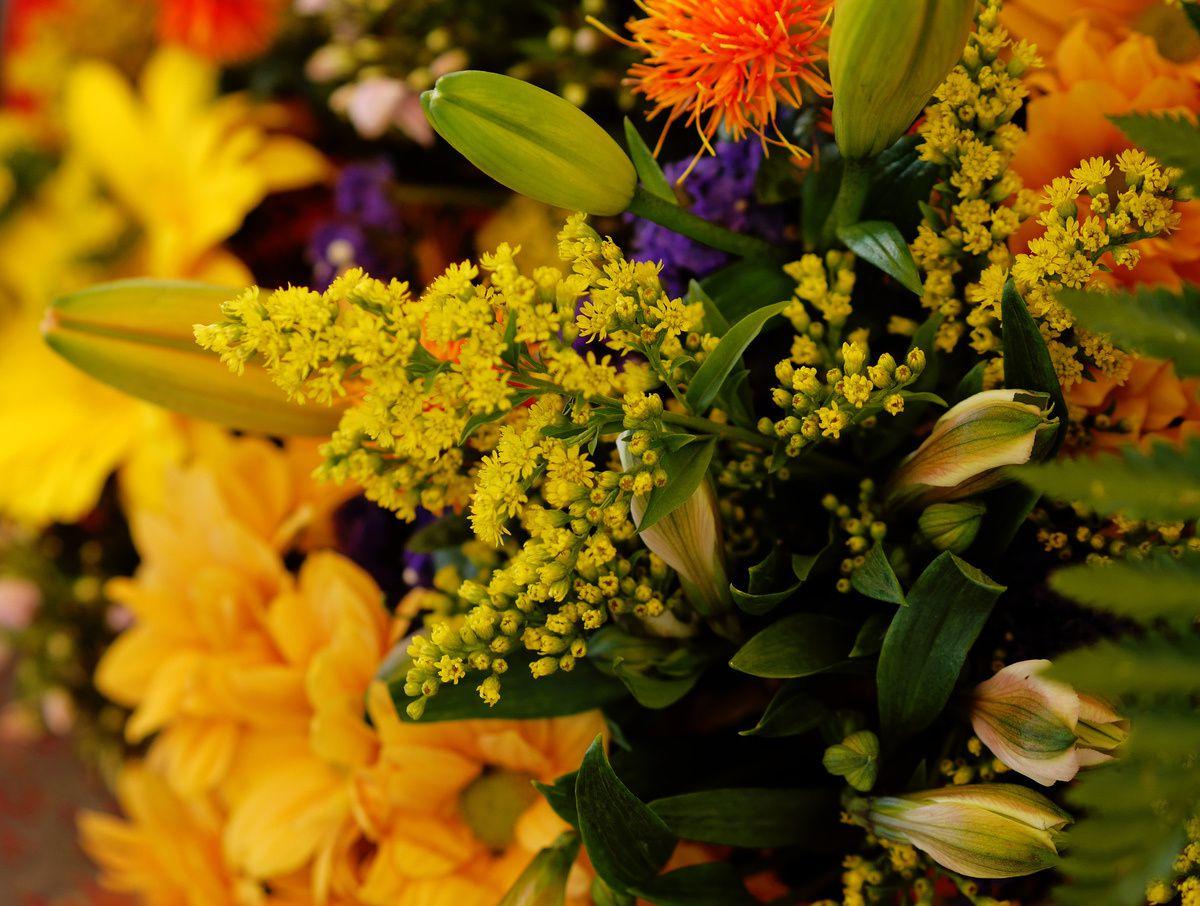 NADINE fleurs
