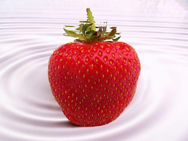 Changements à la fraiseraie