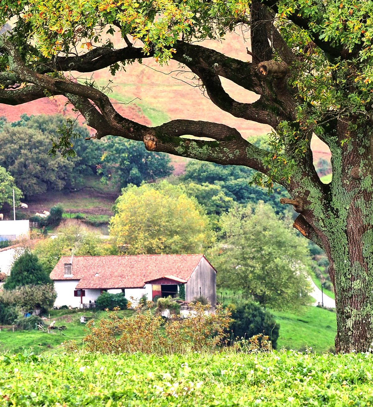 Pays Basque : ITXASSOU