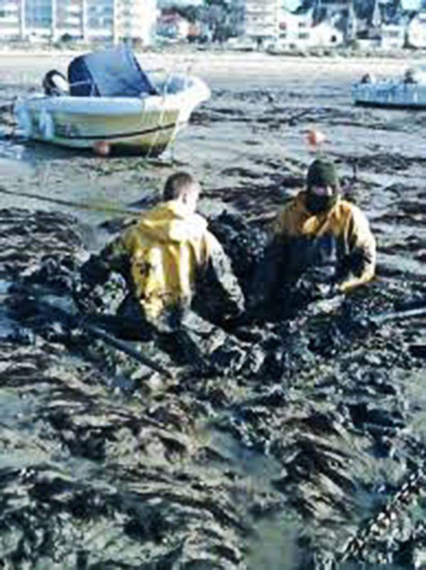 La chronique de Michel Bordat : Marée noire, Michel Field est venu apporter un soutien moral aux habitants de la Côte de Jade.