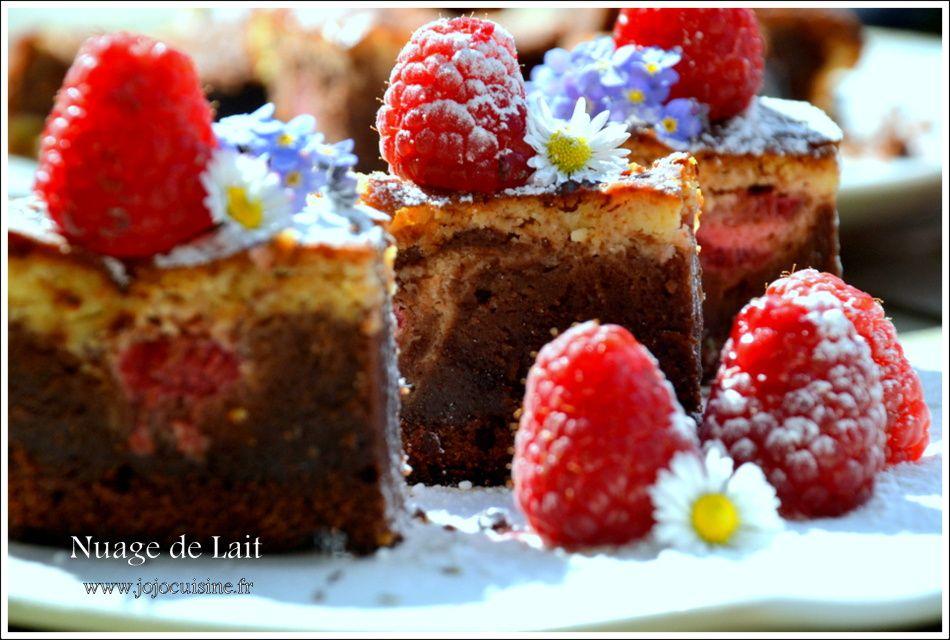 Brownie Cheesecake aux Framboises selon Trish Deseine