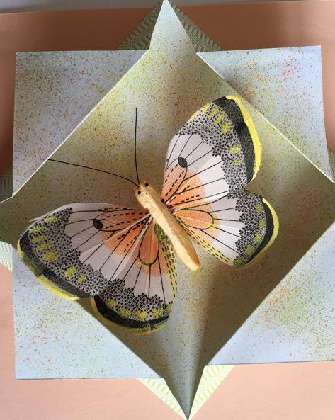 Carte papillon orangé et vert