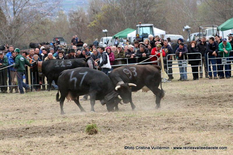 Une journée de combats à Sarre 3 avril 2016 - 2ème partie