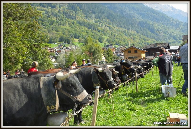 Espace Mont Blanc 2015 - reportage di Simona Porliod