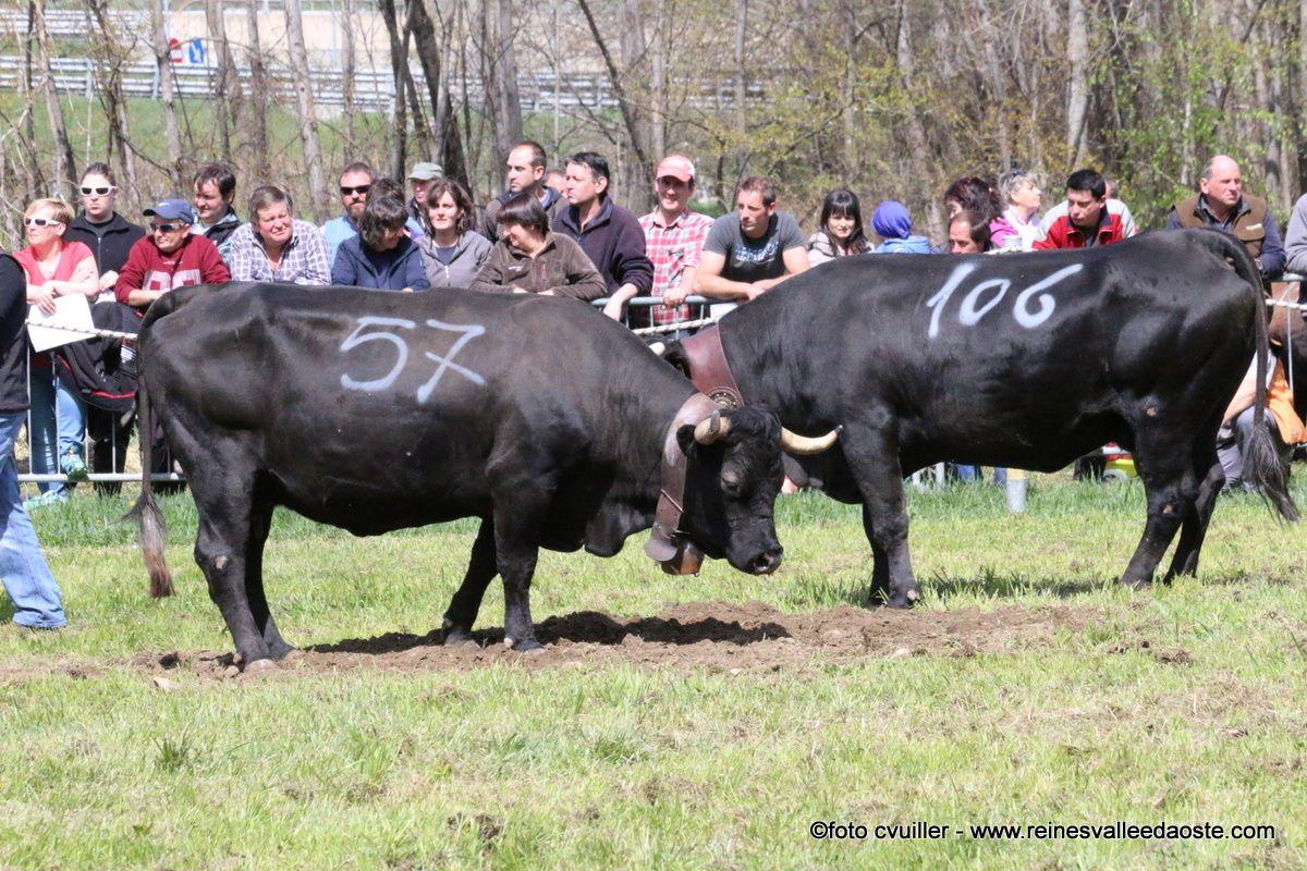 Une journée de combats à Aymavilles 10 avril 2016 - 1ère partie