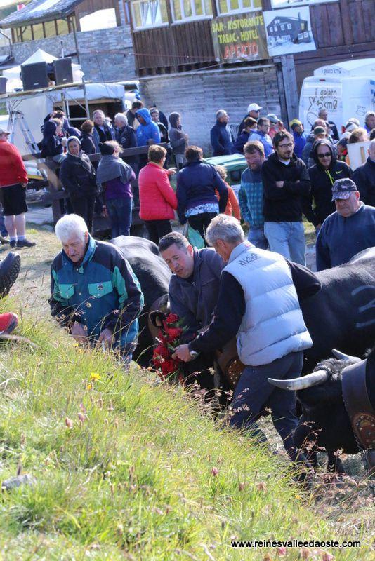 Une journée de combats - Petit Saint Bernard 2016 - 4ème partie
