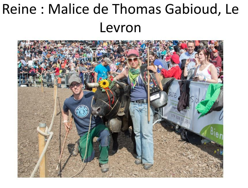 Malice de Thomas Gabioud