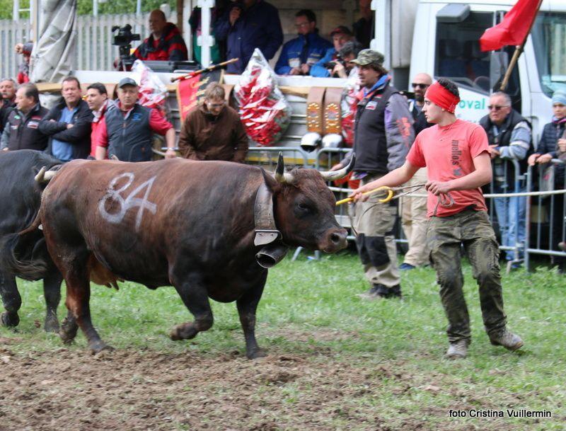 3/4: Fuoco (670kg) Lazier Italo