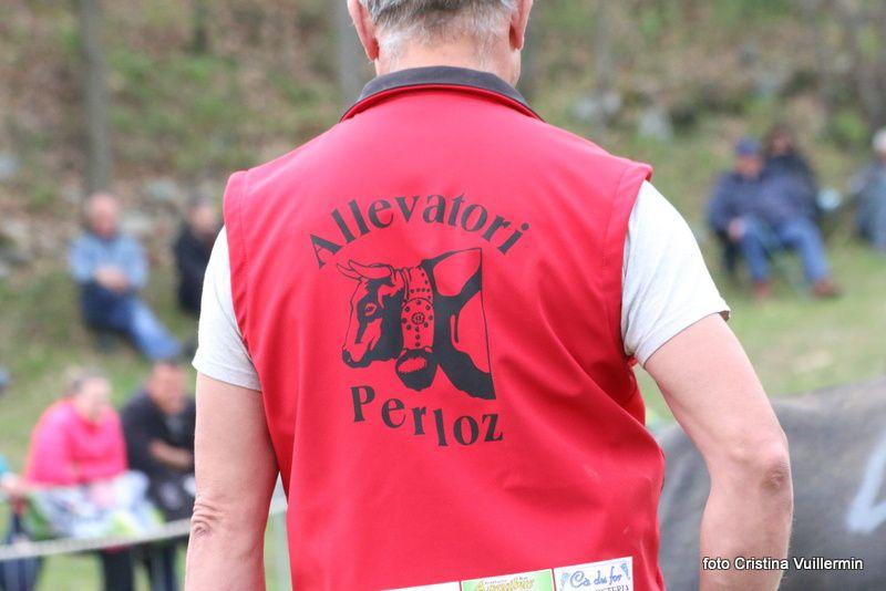 une journée de combats Challand Saint Victor -  25 avril 2017 - 1ère partie