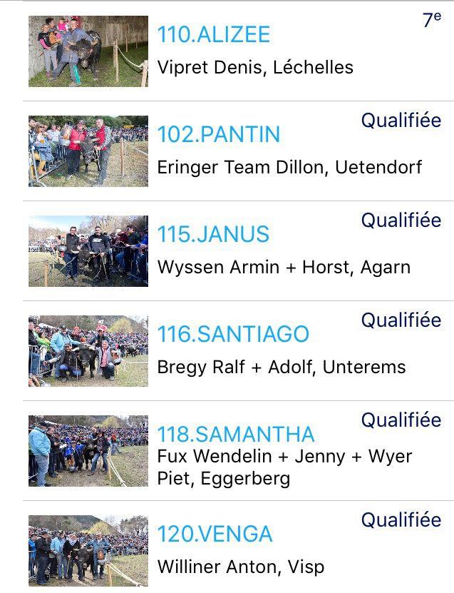 Finale Nationale de la Race d'Hérens : Aproz 2016 - les résultats. 1er Mai 2016