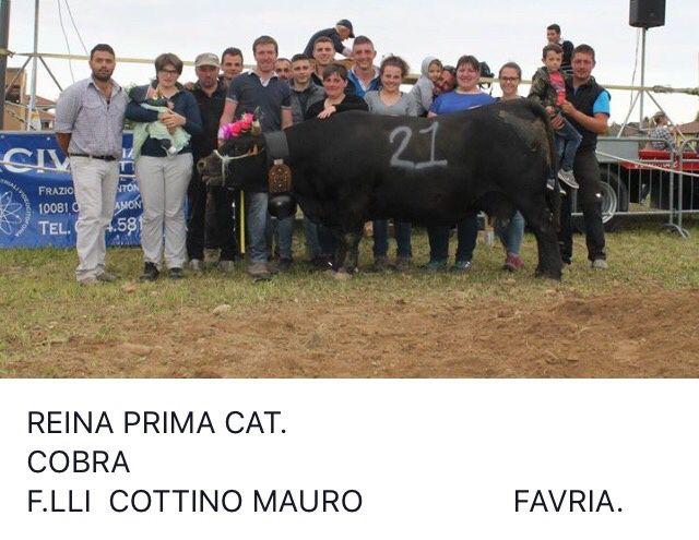 Piemonte eliminatoria di Ozegna 2017