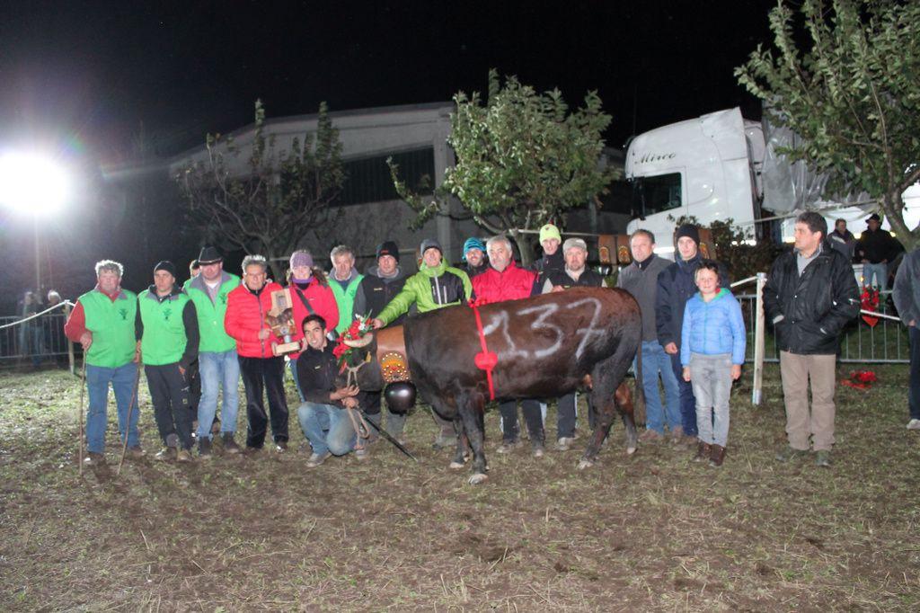 Finale del Piemonte: Tavagnasco 6 novembre 2016 i risultati