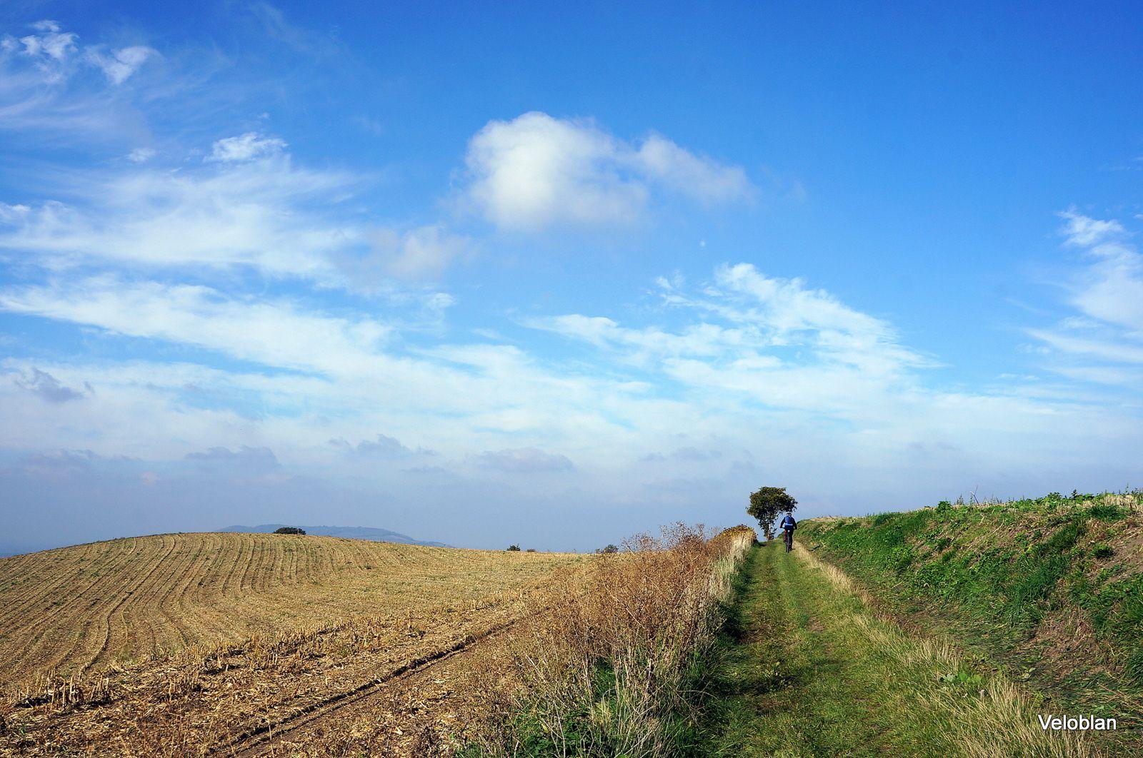Les berges de l'Allier + quelques talus
