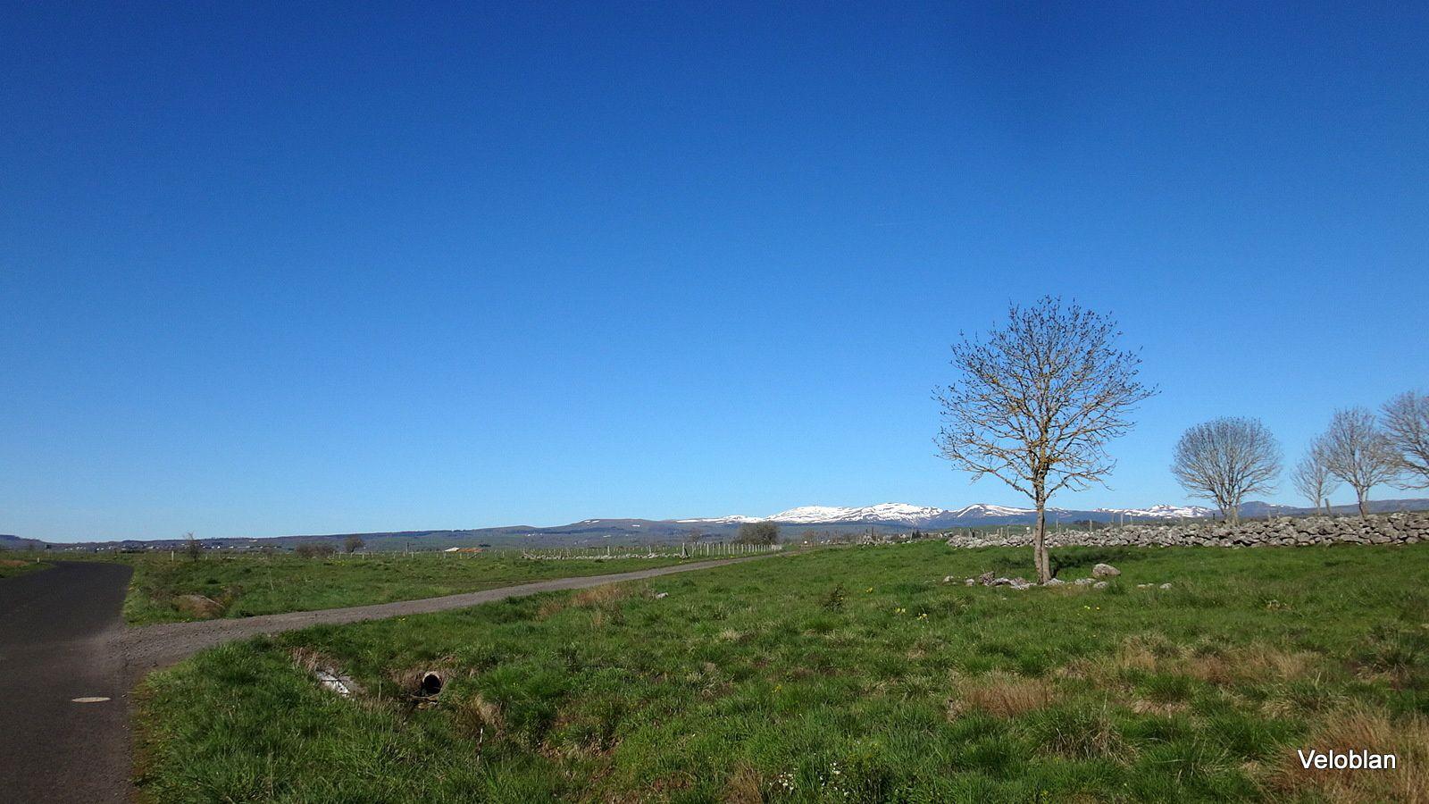 Une virée dans le Cantal en Schlitter