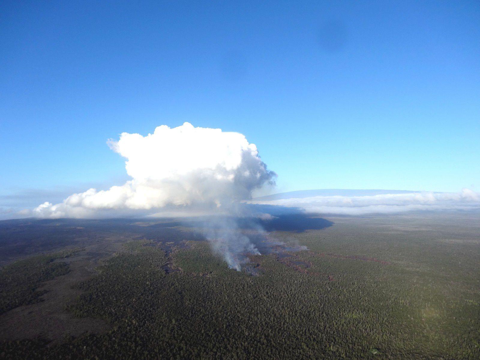 Front de la coulée Kahauale'a 2 , avec émission de fumée au niveau des feux engendrés. On aperçoit la Mauna Loa en arrière-plan - photo HVO / USGS / 20.02.2014