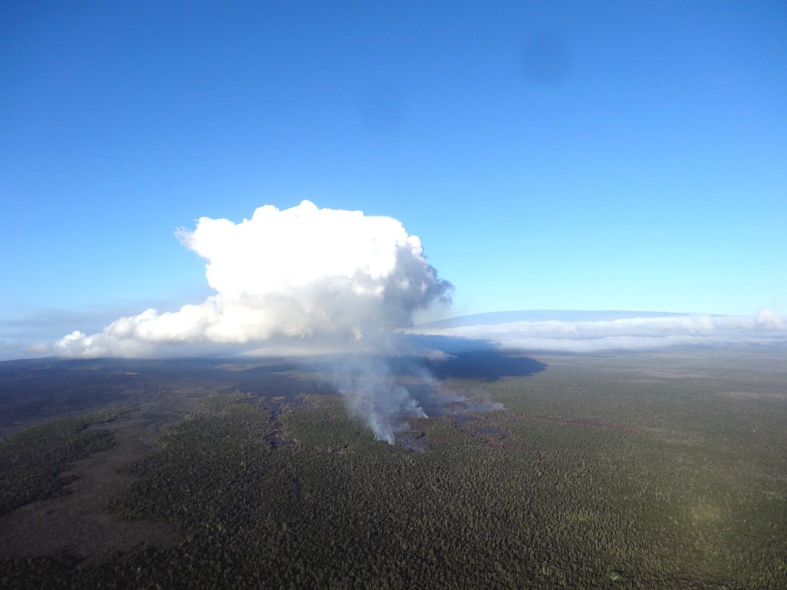 Vieuw of the Kahauale'a 2 flow front with smoke at the forest fires caused . You can see the Mauna Loa in the background - Photo HVO / USGS / 02/20/2014