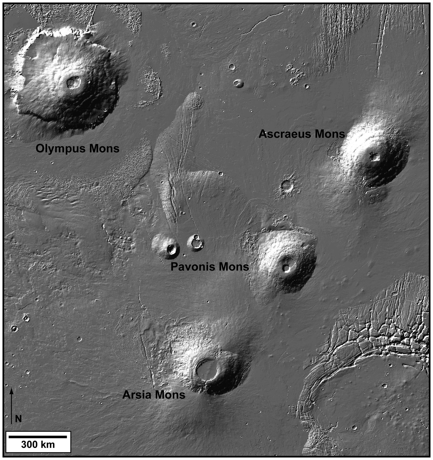Details on the volcanic Tharsis Province : Olympus Mons and the Tharsis volcanic chain , NE-SW oriented - doc.Mars Orbiter Laser Altimeter data , on board Mars Global Surveyor. / Nasa
