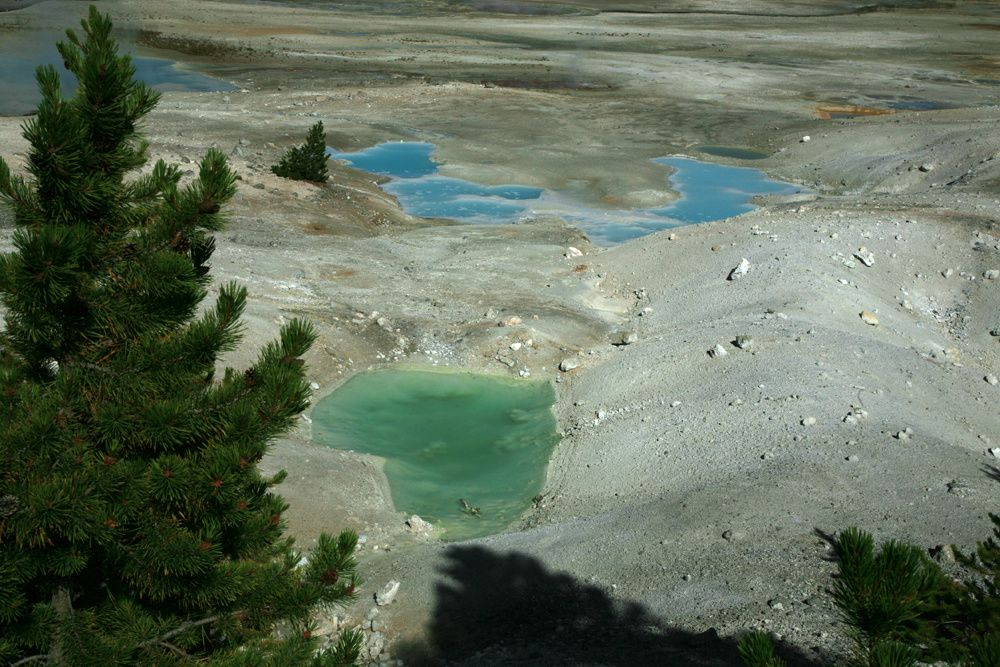 Yellowstone NP - the volcanophiles and other nature lovers can continue to quietly visit these magical landscapes -  Partial view of the  Norris geyser basin - photo Bernard Duyck .